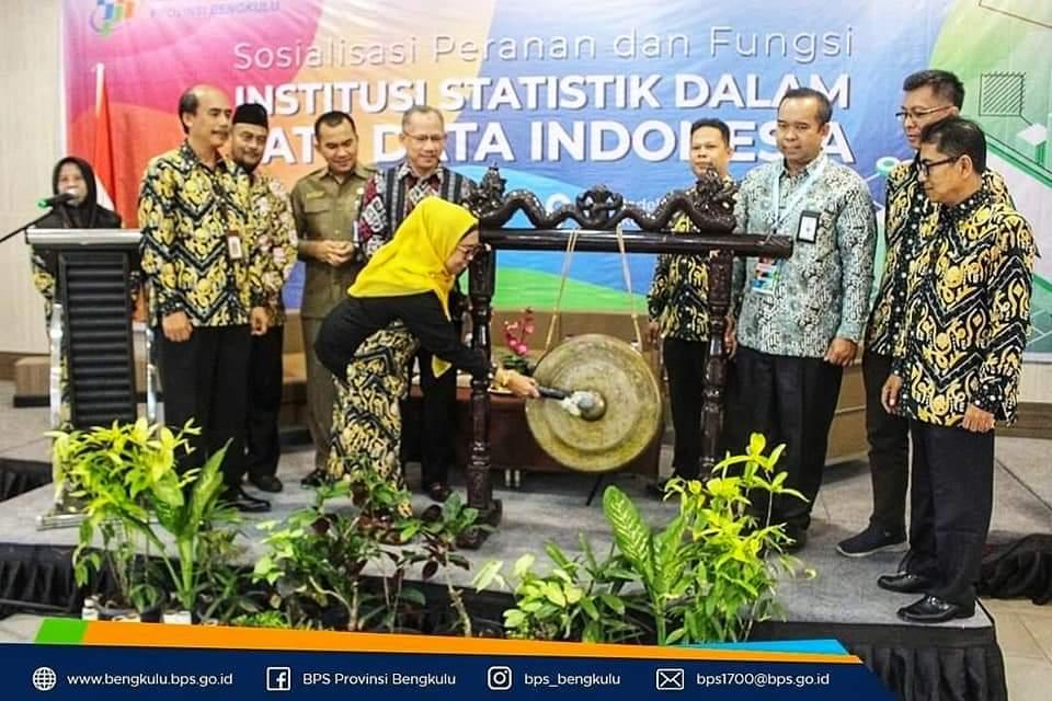 SOSIALISASI PERANAN DAN FUNGSI INSTITUSI STATISTIK DALAM SATU DATA INDONESIA